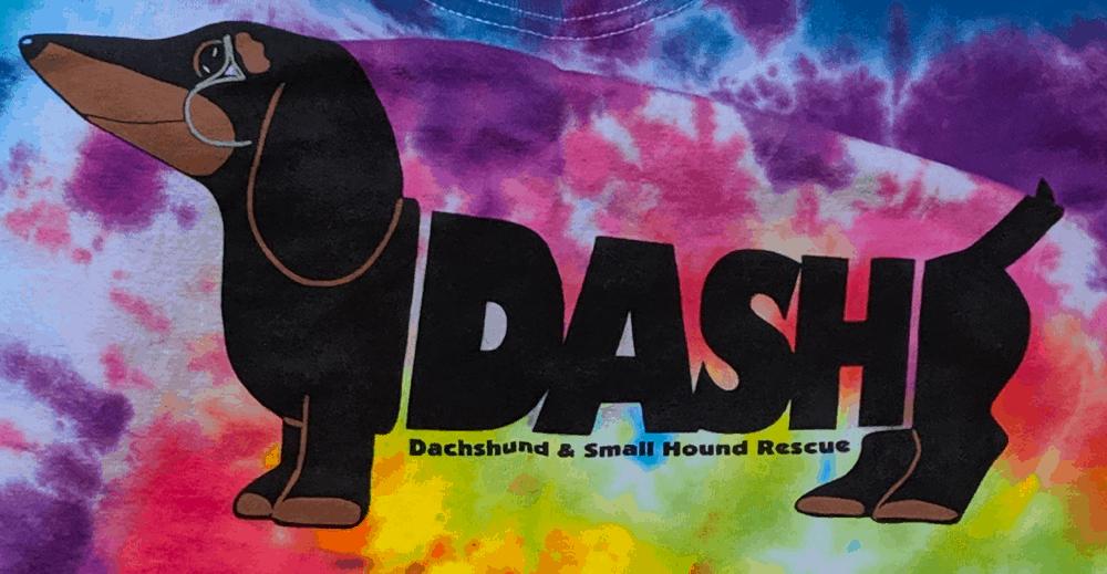 DASH Rescue