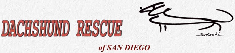 Dachshund Rescue of San Diego