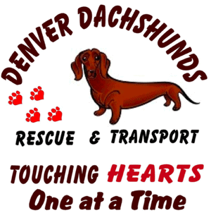 Denver Dachshunds Rescue & Transport