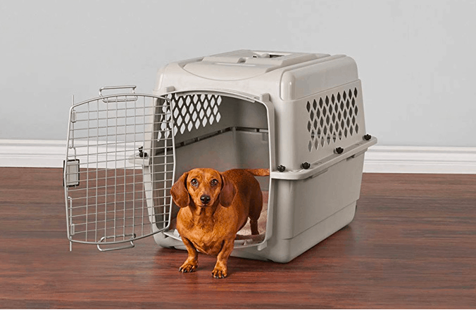 Dog crate for Dachshund