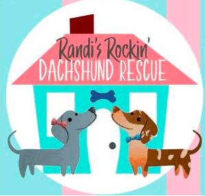 Randi's Rockin Dachshund Rescue