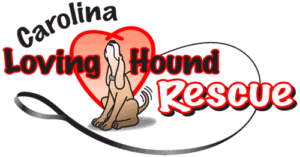 Carolina Loving Hound Rescue