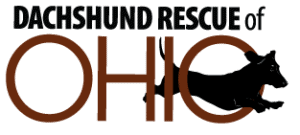 Dachshund Rescue of Ohio