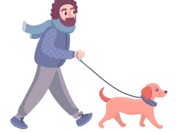 Dachshund Walking Tips