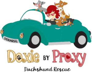 Doxy By Proxy Dachshund Rescue