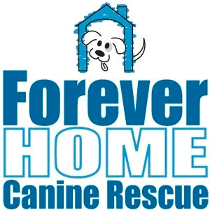 Forever Home Rescue