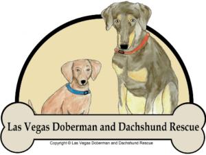 Las Vegas Doberman and Dachshund Rescue