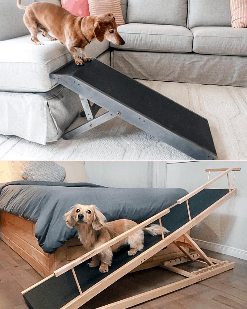 Best Dog Ramp for Dachshunds