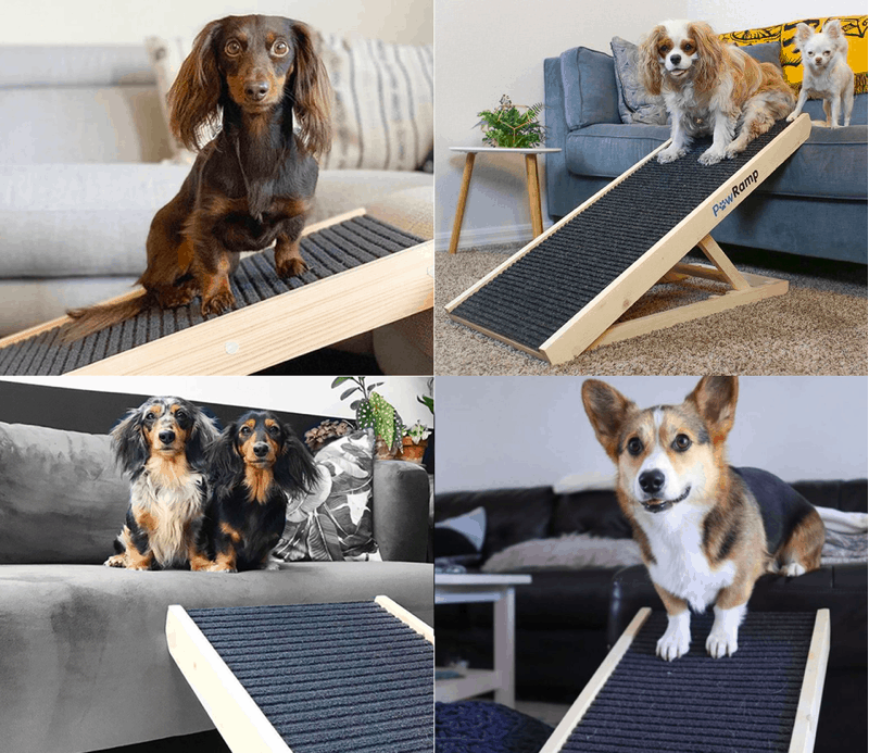 AlphaPaw Dog Ramps for Bed and Couch