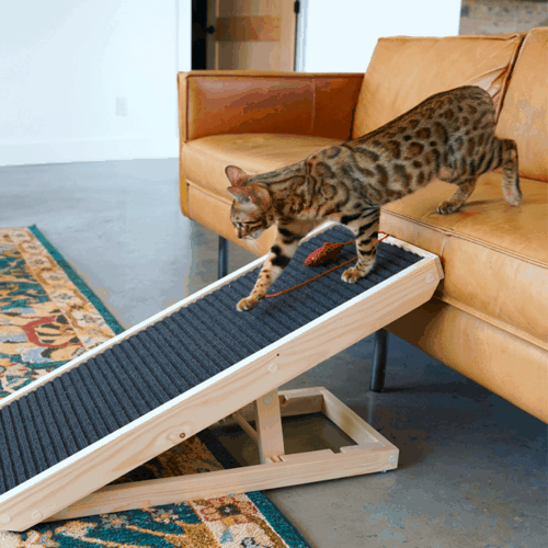AlphaPaw ScratchyRamp for Cats