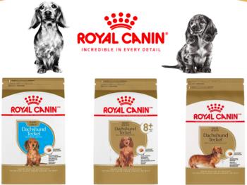 Royal Canin Dog Food for Dachshunds