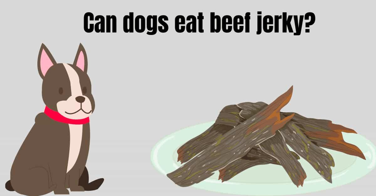 Is Beef Jerky Dangerous for Dogs