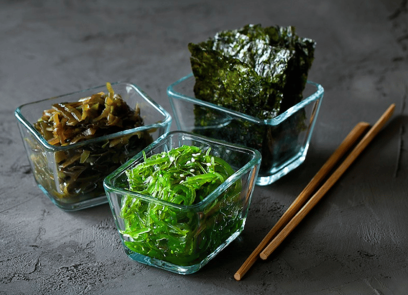 Is Seaweed Safe for Dogs